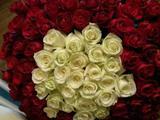 Букеты цветы доставка розы тюльпаны